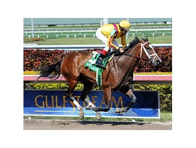 "Dreaming of Julia faces 4 in the Mother Goose Stakes.<br><a target=""blank"" href=""http://photos.bloodhorse.com/AtTheRaces-1/at-the-races-2013/27257665_QgCqdh#!i=2433030369&k=Dqb69h2"">Order This Photo</a>"