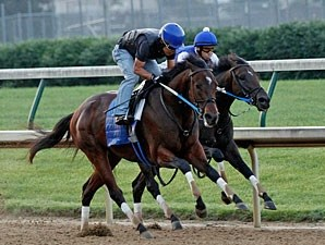 Nehro works towards the Belmont.