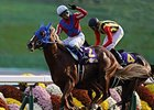 Toho Jackal Streaks to Course Record at Kyoto
