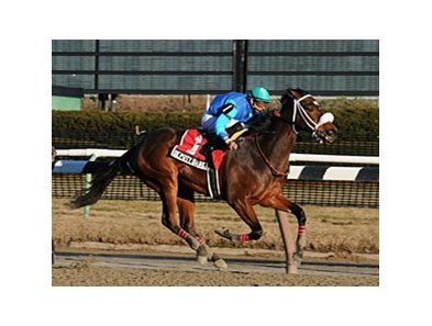 "Deputy Daney stretched his unbeaten steak to three by winning the Jimmy Winkfield Stakes at Aqueduct.<br><a target=""blank"" href=""http://www.bloodhorse.com/horse-racing/photo-store?ref=http%3A%2F%2Fpictopia.com%2Fperl%2Fgal%3Fprovider_id%3D368%26ptp_photo_id%3D8749041%26ref%3Dstory"">Order This Photo.</a>"