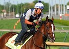 "Normandy Invasion<br><a target=""blank"" href=""http://photos.bloodhorse.com/TripleCrown/2013-Triple-Crown/Kentucky-Derby-Workouts/29026796_jvcnn8#!i=2489745943&k=bF8ZbXV"">Order This Photo</a>"