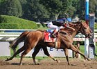 "Ginger Punch outnods Lemon Drop Mom in the Personal Ensign.<br><a target=""blank"" href=""http://www.bloodhorse.com/horse-racing/photo-store?ref=http%3A%2F%2Fpictopia.com%2Fperl%2Fgal%3Fprovider_id%3D368%26ptp_photo_id%3D5625342%26ref%3Dstory"">Order This Photo</a>"