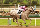 Undefeated Flashback drew post 2 in the San Felipe.