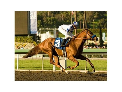 "Favored Sidney's Candy scored a decisive victory in the San Vicente Stakes.<br><a target=""blank"" href=""http://www.bloodhorse.com/horse-racing/photo-store?ref=http%3A%2F%2Fpictopia.com%2Fperl%2Fgal%3Fprovider_id%3D368%26ptp_photo_id%3D8795215%26ref%3Dstory"">Order This Photo</a>"