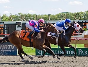 Bow Tie Basta wins the 2009 Purple Violet.