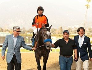 The Factor wins the 2012 San Carlos.