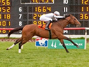 General Election wins the 2013 Arlington Classic Stakes.