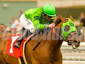 Desert Code cruises to victory in the Daytona Handicap