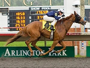Pachattack wins the 2011 Arlington Matron.