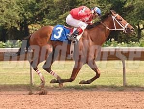 Tin Cup Chalice took the New York Derby, the second leg of the OTB Big Apple Triple, at Finger Lakes July 12.