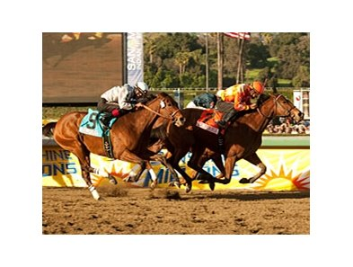 "Evening Jewel will carry high weight of 122 pounds in the $150,000 Buena Vista Handicap.<br><a target=""blank"" href=""http://www.bloodhorse.com/horse-racing/photo-store?ref=http%3A%2F%2Fpictopia.com%2Fperl%2Fgal%3Fprovider_id%3D368%26ptp_photo_id%3D9387858%26ref%3Dstory"">Order This Photo</a>"
