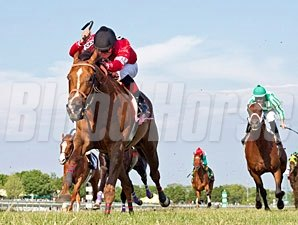 Rahystrada wins the 2012 Arlington Handicap.