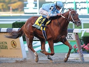 Haynesfield, To Honor and Serve Meet in Cigar