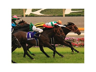 "Real Impact and Keita Tosaki take the Yasuda Kinen.<br><a target=""blank"" href=""http://www.bloodhorse.com/horse-racing/photo-store?ref=http%3A%2F%2Fpictopia.com%2Fperl%2Fgal%3Fprovider_id%3D368%26ptp_photo_id%3D9551789%26ref%3Dstory"">Order This Photo</a>"