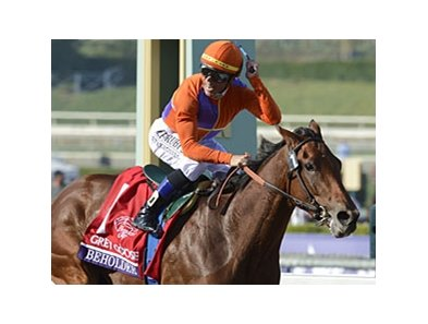 Beholder earned her Eclipse Award in the Breeders' Cup.