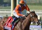 Beholder Champion 2-Year-Old Filly