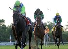 "Check the Label leads them home in the Garden City.<br><a target=""blank"" href=""http://www.bloodhorse.com/horse-racing/photo-store?ref=http%3A%2F%2Fpictopia.com%2Fperl%2Fgal%3Fprovider_id%3D368%26ptp_photo_id%3D9193319%26ref%3Dstory"">Order This Photo</a>"