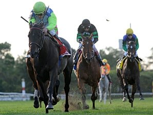 Check the Label wins the 2010 Garden City.