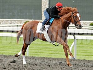 Dullahan - Keeneland, April 8, 2012.