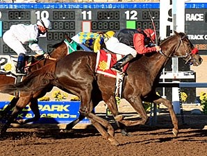 Angel At Home wins the 2011 El Paso Times Stakes.