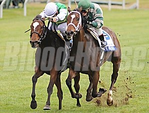Eye of Taurus (right) takes the 2nd division of the 2009 Pin Oak Valley View.