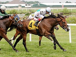 Beyond Smart wins the 2014 Crowd Pleaser Handicap.
