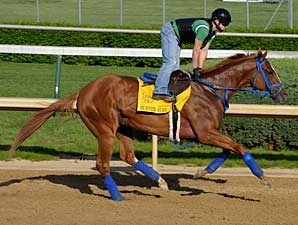 Summer Bird gallops at Churchill Downs on April 27
