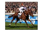 New Approach will be among the favorites in the Epsom Derby (Eng.-I) June 7.