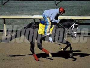 Flat Out, Churchill Downs October 29, 2011.