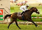 "Colonel John won the Wickerr Stakes on the turf last time out.<br><a target=""blank"" href=""http://www.bloodhorse.com/horse-racing/photo-store?ref=http%3A%2F%2Fpictopia.com%2Fperl%2Fgal%3Fprovider_id%3D368%26ptp_photo_id%3D8378126%26ref%3Dstory"">Order This Photo</a>"