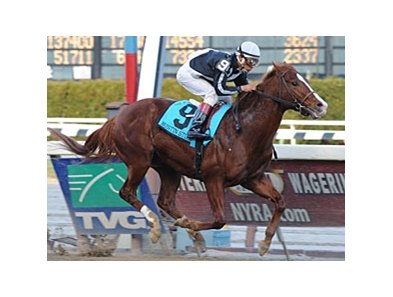 "Bustin Stones, shown winning the Carter Handicap (gr. I) <br><a target=""blank"" href=""http://www.bloodhorse.com/horse-racing/photo-store?ref=http%3A%2F%2Fpictopia.com%2Fperl%2Fgal%3Fprovider_id%3D368%26ptp_photo_id%3D4127332%26ref%3Dstory"">Order This Photo</a>"