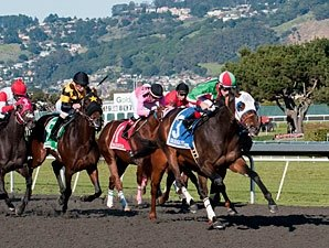 Zeewat Shows Promise in California Derby