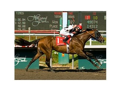 "Mast Track and Tyler Baze take the Hollywood Gold Cup.<br><a target=""blank"" href=""http://www.bloodhorse.com/horse-racing/photo-store?ref=http%3A%2F%2Fpictopia.com%2Fperl%2Fgal%3Fprovider_id%3D368%26ptp_photo_id%3D4968529%26ref%3Dstory"">Order This Photo</a>"