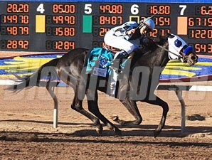 Twice The Appeal wins the 2011 Sunland Park Derby.