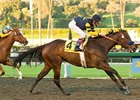 "Indian Blessing charges to victory in the La Brea Stakes.<br><a target=""blank"" href=""http://www.bloodhorse.com/horse-racing/photo-store?ref=http%3A%2F%2Fpictopia.com%2Fperl%2Fgal%3Fprovider_id%3D368%26ptp_photo_id%3D7226803%26ref%3Dstory"">Order This Photo</a>"