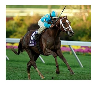"English Channel wins the John Deere Breeders' Cup Turf (gr. IT).<br><a target=""blank"" href=""http://www.bloodhorse.com/horse-racing/photo-store?ref=http%3A%2F%2Fpictopia.com%2Fperl%2Fgal%3Fprovider_id%3D368%26ptp_photo_id%3D2632885%26ref%3Dstory"">Order This Photo</a>"