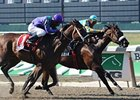 "Rightly So ran a thrilling wire-to-wire race to win the Bed o' Roses Handicap at Belmont Park.<br><a target=""blank"" href=""http://www.bloodhorse.com/horse-racing/photo-store?ref=http%3A%2F%2Fpictopia.com%2Fperl%2Fgal%3Fprovider_id%3D368%26ptp_photo_id%3D9096557%26ref%3Dstory"">Order This Photo</a>"