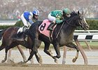 "Honor Code rolls to victory at Aqueduct.<br><a target=""blank"" href=""http://photos.bloodhorse.com/AtTheRaces-1/At-the-Races-2014/i-rbPDcsf"">Order This Photo</a>"