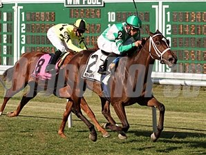 Eye of Taurus wins the 2010 Revidere Stakes.
