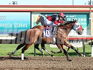 Native American and Grand Full Moon deadheat in the 2014 Shakopee Juvenile Stakes.