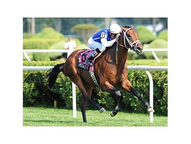 "With Anticipation winner Interactif is the one to beat in the Pilgrim Stakes.<br><a target=""blank"" href=""http://www.bloodhorse.com/horse-racing/photo-store?ref=http%3A%2F%2Fpictopia.com%2Fperl%2Fgal%3Fprovider_id%3D368%26ptp_photo_id%3D8457915%26ref%3Dstory"">Order This Photo</a>"