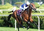 "Interactif will make his 3-year-old debut in the 1 1/16-mile Hallandale Beach.<br><a target=""blank"" href=""http://www.bloodhorse.com/horse-racing/photo-store?ref=http%3A%2F%2Fpictopia.com%2Fperl%2Fgal%3Fprovider_id%3D368%26ptp_photo_id%3D8457915%26ref%3Dstory"">Order This Photo</a>"