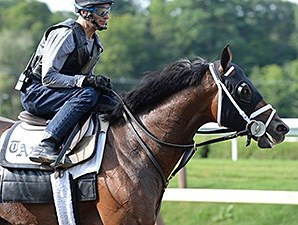 Palace Malice at Saratoga August 16, 2014.