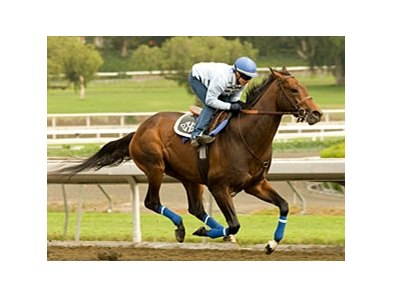 The next work for Colonel John, shown in a April 20 work at Santa Anita, will be determined by the weather.