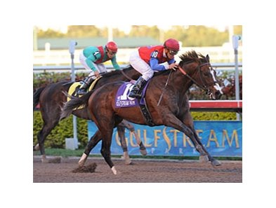 "You and I Forever pulls away in the Gulfstream Park Handicap.<br><a target=""blank"" href=""http://www.bloodhorse.com/horse-racing/photo-store?ref=http%3A%2F%2Fpictopia.com%2Fperl%2Fgal%3Fprovider_id%3D368%26ptp_photo_id%3D8839278%26ref%3Dstory"">Order This Photo</a>"