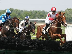 Network News wins the Sport of Kings Maiden Hurdle, June 25, 2013.