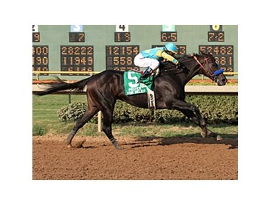 "Prayer for Relief won the Super Derby on September 10.<br><a target=""blank"" href=""http://www.bloodhorse.com/horse-racing/photo-store?ref=http%3A%2F%2Fpictopia.com%2Fperl%2Fgal%3Fprovider_id%3D368%26ptp_photo_id%3D9662473%26ref%3Dstory"">Order This Photo</a>"