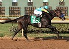 "Prayer for Relief comes home strong to win the Super Derby at Louisiana Downs. <br><a target=""blank"" href=""http://www.bloodhorse.com/horse-racing/photo-store?ref=http%3A%2F%2Fpictopia.com%2Fperl%2Fgal%3Fprovider_id%3D368%26ptp_photo_id%3D9662473%26ref%3Dstory"">Order This Photo</a>"