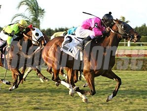 Bad Debt wins the 2011 Bonnie Heath Turf Cup.