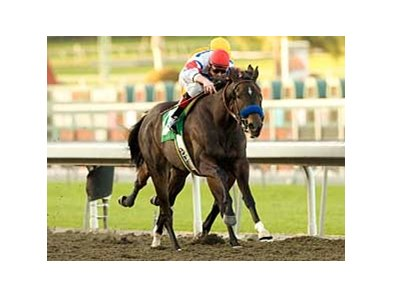 "Century Park won the grade III Santa Ysabel in 2009.<br><a target=""blank"" href=""http://www.bloodhorse.com/horse-racing/photo-store?ref=http%3A%2F%2Fpictopia.com%2Fperl%2Fgal%3Fprovider_id%3D368%26ptp_photo_id%3D7388077%26ref%3Dstory"">Order This Photo</a>"